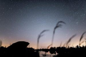 Красивое ночное небо на рыбалке