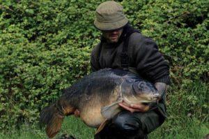 the brute carp