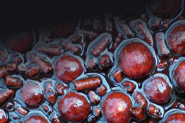 Glugged Baits Boilies