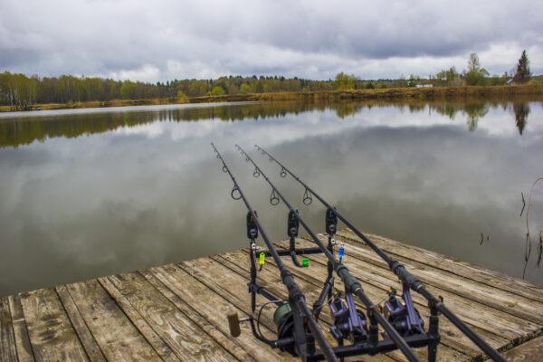 Открытие сезона карповой ловли 2019